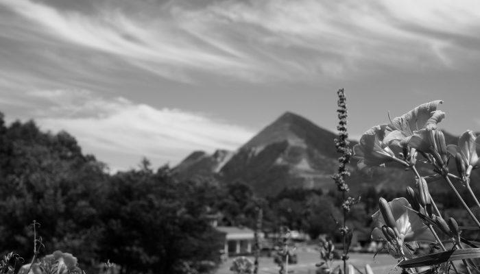 武甲山とヘメロカリス