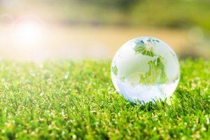 芝生とガラスの地球